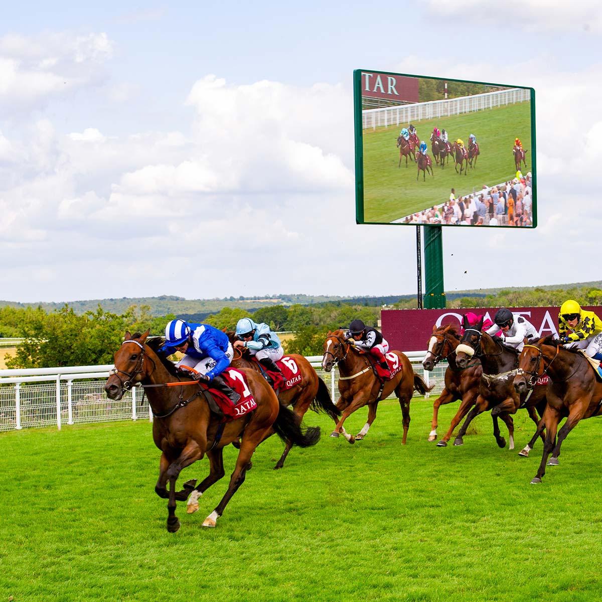 Goodwood Qatar Horses-Racing Epoch revolving screen
